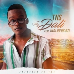 TNS - My Dali Ft. Indlovukazi